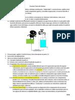 Resumen Teoría De Sistemas.pdf