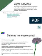 9 Sistema Nervioso