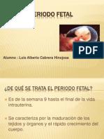 2-3periodofetal-embriologa-120212235055-phpapp01