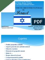 Repere Ale Comunicarii in ISRAEL