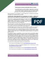 Guia-Nociones-Basicas-Sociedades-por-acciones-V1.11 (1).pdf