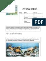 7_CARBONIFERO