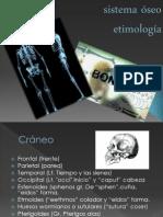 Sistema óseo,emitologia