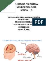 NEUROFISIOLOGIA_5