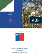 Agricultura Org. Nacional Bases Tecnicas y Situacion Actual 2013
