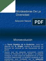 12seleccinnatural-091207200022-phpapp01