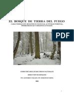 bosque_tdf