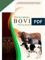 ENCICLOPEDIA BOVINOS