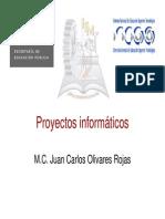Tipos de Proyectos Informaticos