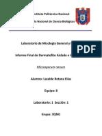 Reporte de Microsporum Nanum
