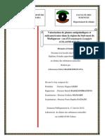 rasolomananaAdimananaR_PC_M2_12.pdf