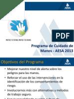 Presentación del Programa de Manos AESA - 2013