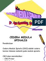 Cedera Medula Spinalis