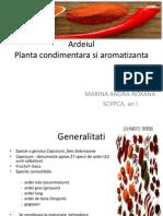Plante condimentare