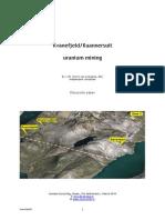 J.W Storm Van Leeuwen Kuannersuit Discussion Paper