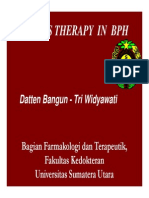 Gus156 Slide Drugs Therapy in Bph