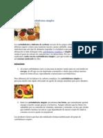 Algunos Conceptos Basicos de Nutricion