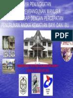 IPM-DINKES