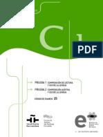 dele_c1_pruebas_1_y_2_191111_1