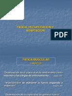 Fatiga, Recuperacion y Adaptacion