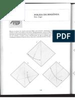 Flor Begonia.pdf