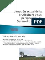 presentaciontruficulturaenchile2011