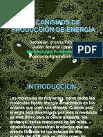 MECANISMOS DE PRODUCCIÓN DE ENERGÍA