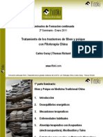 180806786 Garay Carles y Richard Thomas Tratamiento Shen Psique Fitoterapia China Seminario2 2011 Fitoki PDF