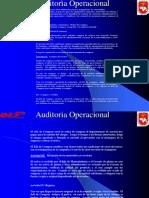 Auditorìa Operacional Procedimientos