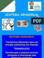 aula 3- Sistema sensorial Fisio Humana.ppt