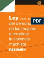 Llei Violencia Resum Castella