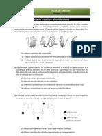 Bio12 - ficha trabalho 5 monohibridismo