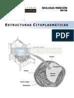 Estructuras citoplasmaticas