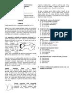 Examen Pre 4.1 2014