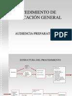 audiencia_preparatoria