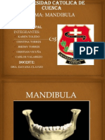 mandibula-121203144201-phpapp01