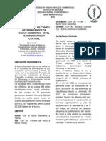 Observacion de Campo Determinantes de Salud Ambiental en El Barrio (1)