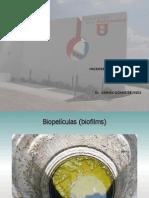 biorreactores biopeliculas