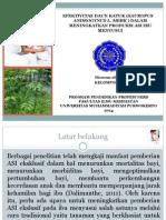 Efektivitas Daun Katuk (Sauropus Androgynus l