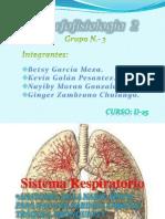 Diapositivas de Aparato Respiratorio 3