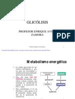 GLICÓLISIS octava semana