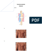 Exercício de anatomia (1)