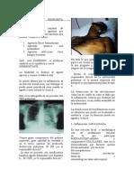 Semiologia - Inflamacion