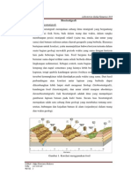 biostratigrafi