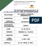 portafolio mateIV 2014