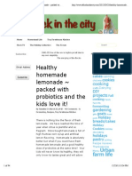 A Flock in the City | Healthy Homemade Lemonade ~ Packed With Probiotics and the Kids Love It!