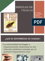 Enfermedad de Chagas Dr Guadarrama