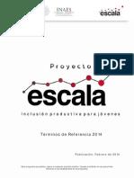 03b Proyecto Escala - Terminos de Referencia