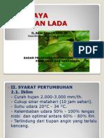 Power Poin Budidaya Lada