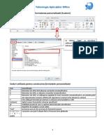 Formatarea Personalizata Custom